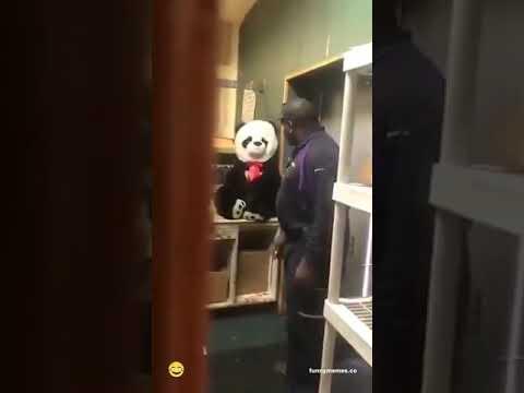 Surprise Bear Prank