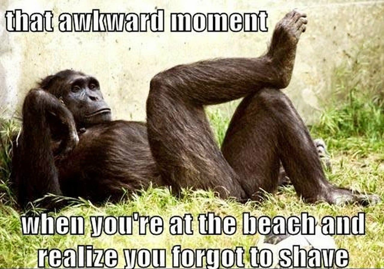 Awkward Moment at Beach and Realize forgot to Shave Funny Meme
