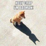 Batman Funny Meme
