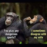 Dangerous Sports Disagree My Wife Funny Meme