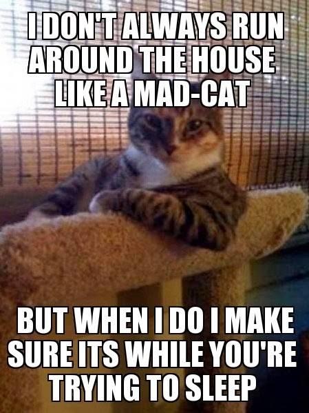 dont-always-run-around-the-house-funny-meme