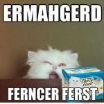 Ermahgerd Ferncer Ferst Funny Meme
