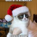 Grumpy Cat Hates Christmas Funny Meme