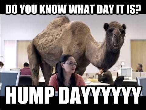 HUMP DAYYYYYYYY Funny Meme