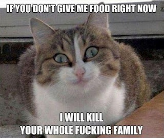 Kill Your Whole Family Funny Meme