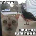 Let me in please Funny Meme