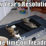 New Years Resolution Funny Meme