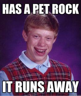 Pet Rock funny meme
