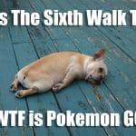 Pokemon GO Funny Meme