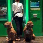 Safely Use ATM Funny Meme