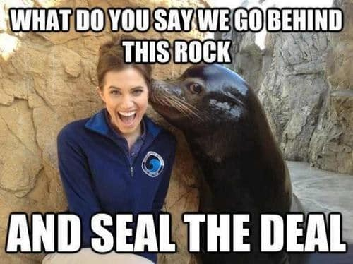 Seal The Deal Funny Meme