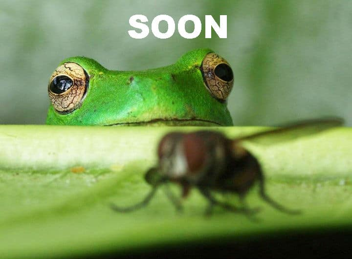 Soon Funny Meme