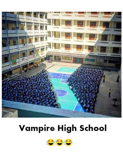 Vampire High School Funny Meme